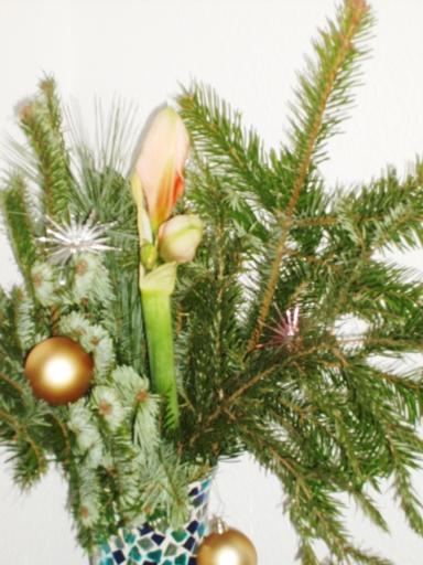 Tausend Blogposts erreicht – Preisnachlass für Weihnachtsgeschichte