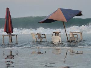beach-774714_640